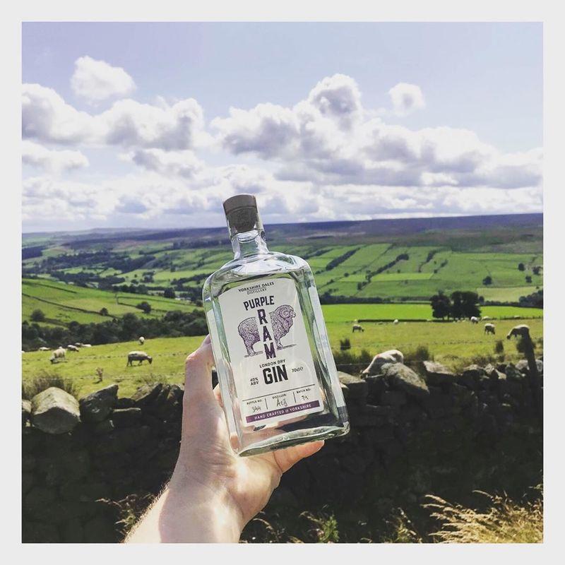 Full purple ram yorkshire dales gin in field