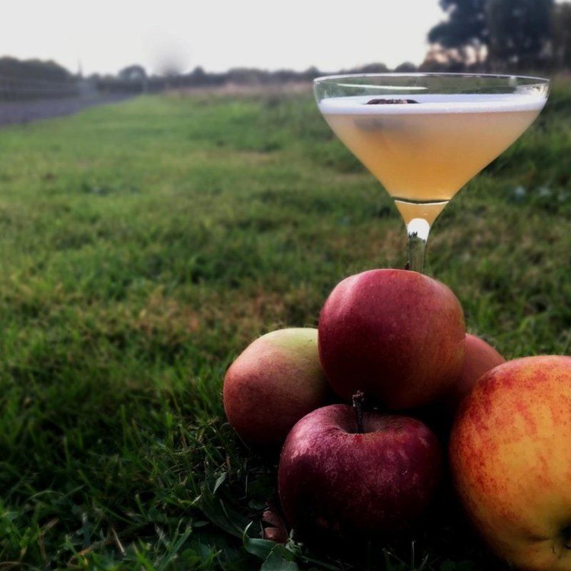 Full cooper king dry gin in spiced apple martini
